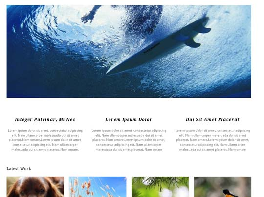 11.free wordpress themes        ( )