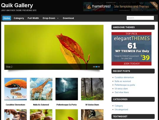 12.free wordpress themes        ( )
