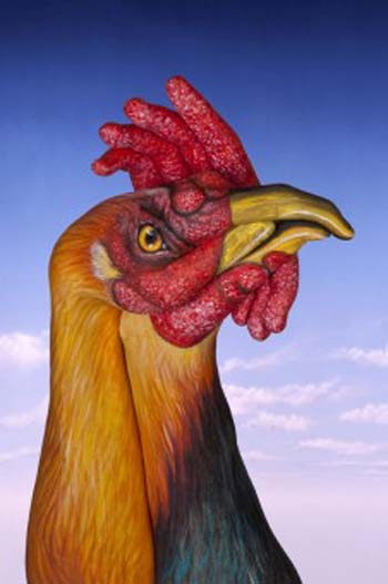 hand painting art  cock