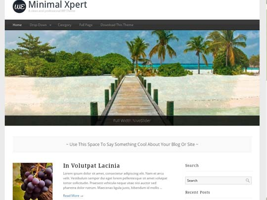 13.free wordpress themes        ( )