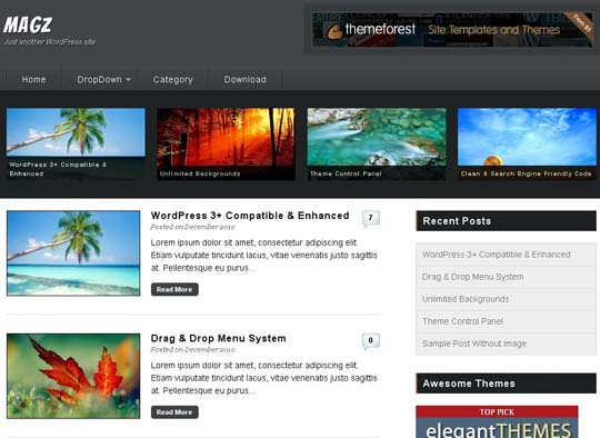 15.free wordpress themes        ( )