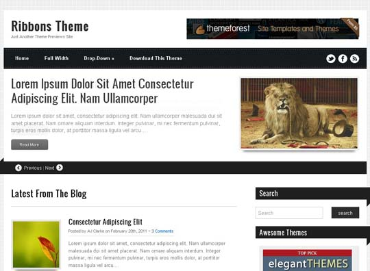 16.free wordpress themes        ( )