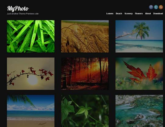 17.free wordpress themes        ( )