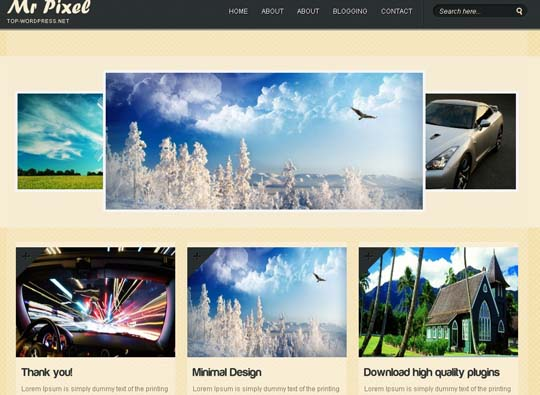 35.free wordpress themes        ( )