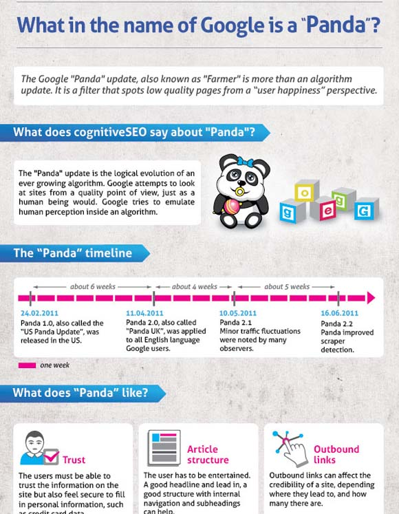 seo infographic