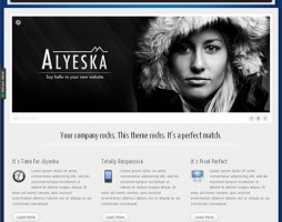1.responsive wordpress themes