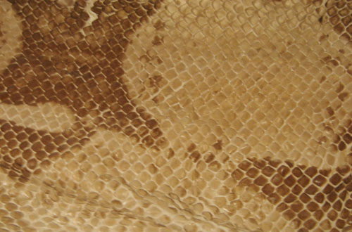 snake textures