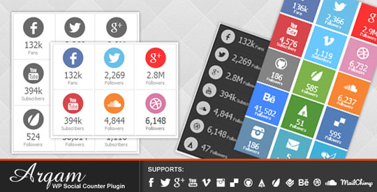 wordpress social counter plugin